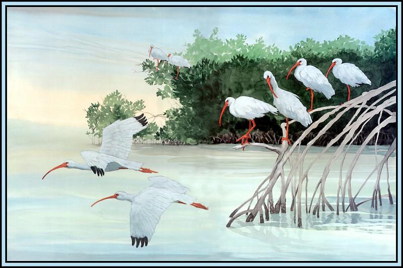 Белый ибис 5. Роджер Бансмер