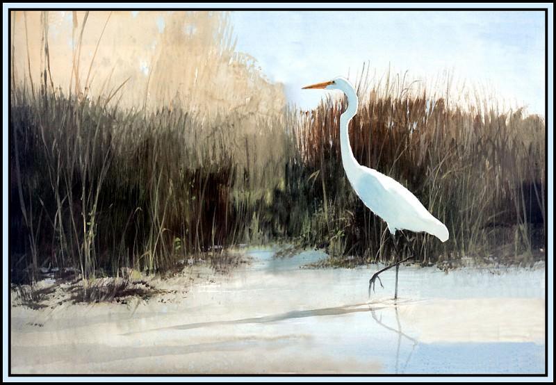 Habitat Marshlands. Roger Bansemer