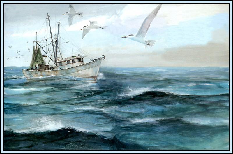 Habitat Open Ocean. Roger Bansemer