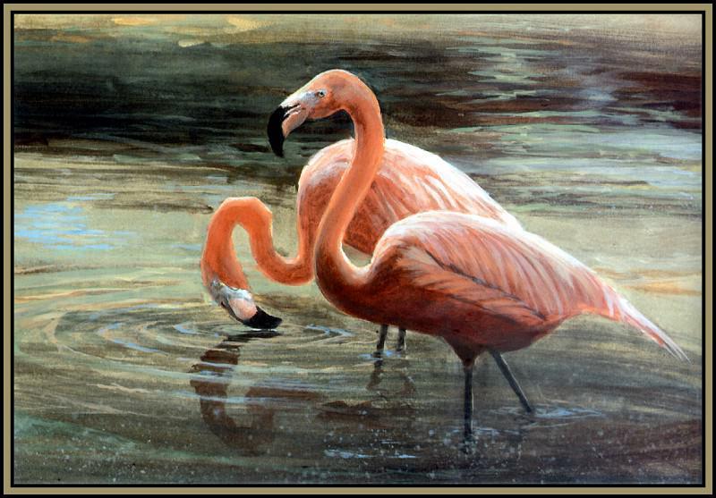 Фламинго 1. Роджер Бансмер