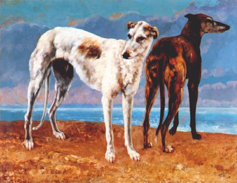 greyhounds of comte de choiseul 1866. Gustave Courbet