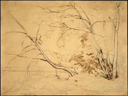 Clump of Trees at Civita Castellana, 1826, NG Washingt. Jean-Baptiste-Camille Corot