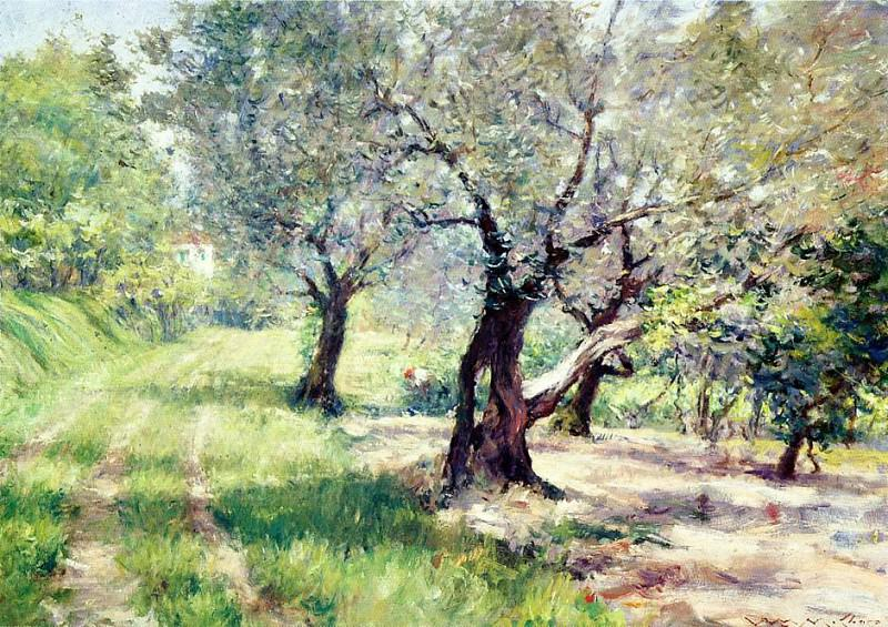 The Olive Grove. William Merritt Chase