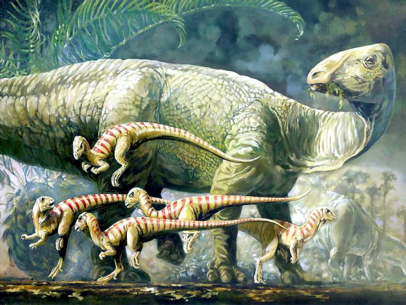 dinosaurs tenontosaurus dossi and hypsilophodont. Karen Carr