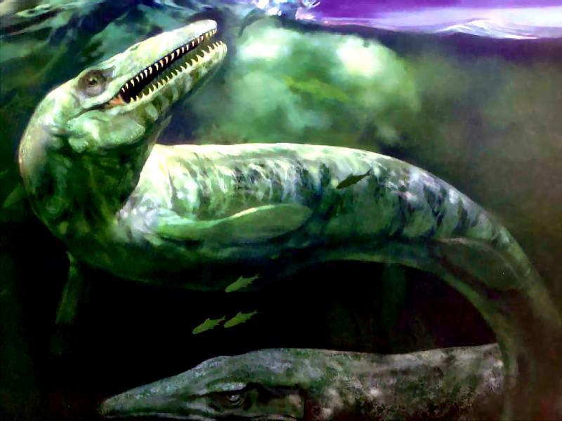 dinosaurs mosasaurs. Karen Carr