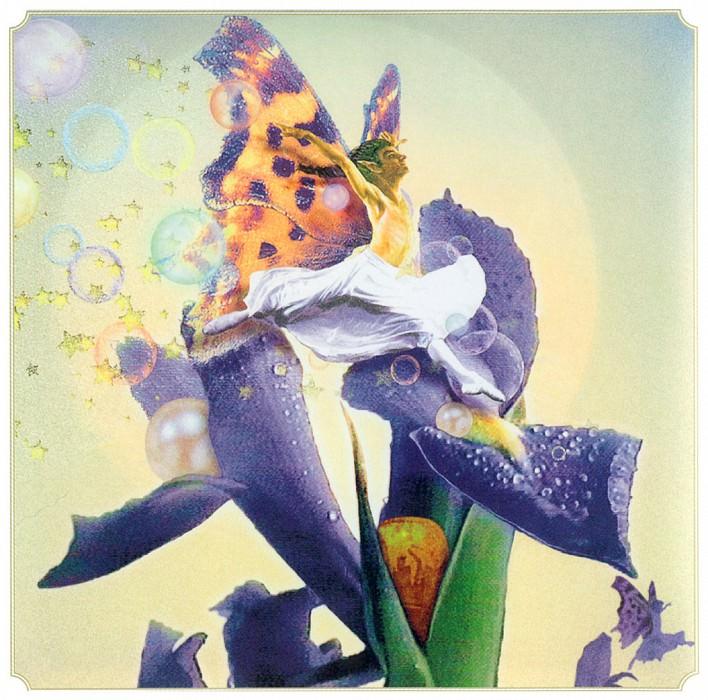 Sp Iris Fairy. Tom Cross