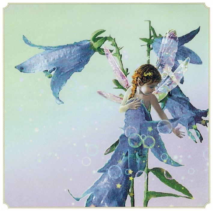 Aut Bluebell Fairy. Tom Cross