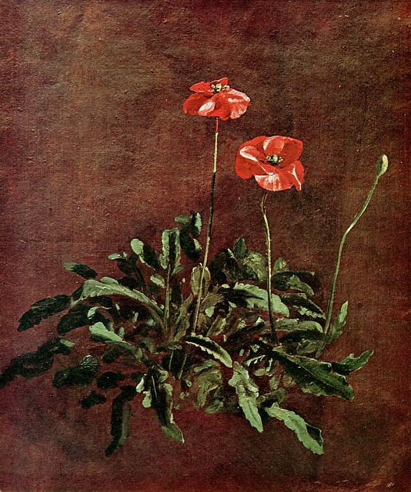 Study for poppies. John Constable