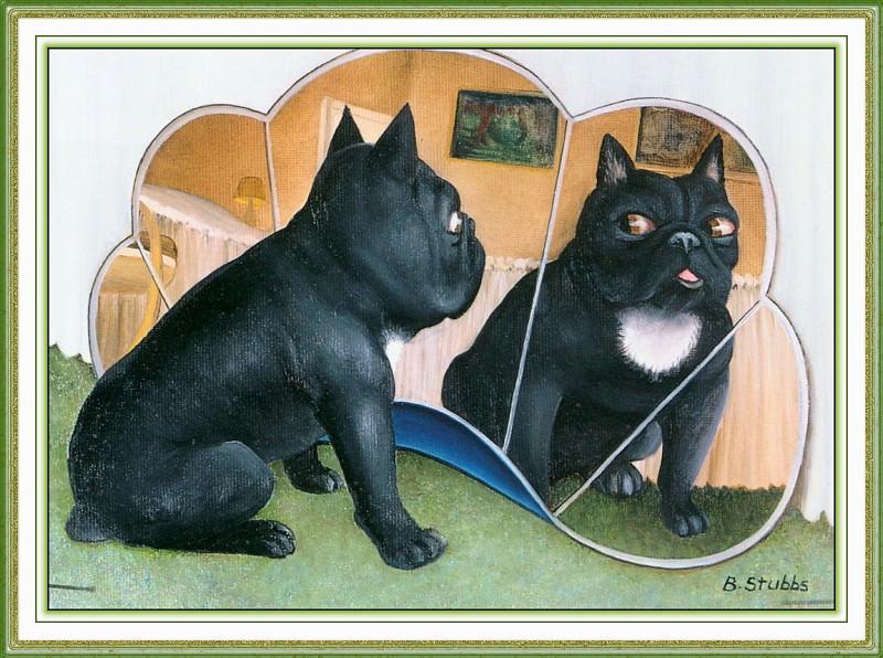 CookBeryl i11 Dogs 3-WeaSDC. Берил Кук
