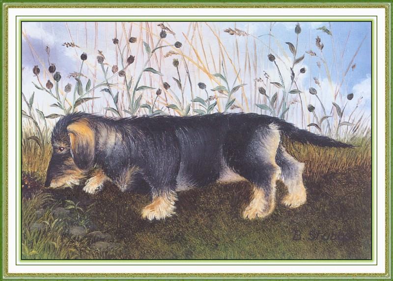 CookBeryl i10 Dogs 2-WeaSDC. Beryl Cook