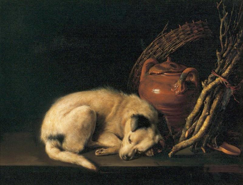 Dog. Gerrit Dou
