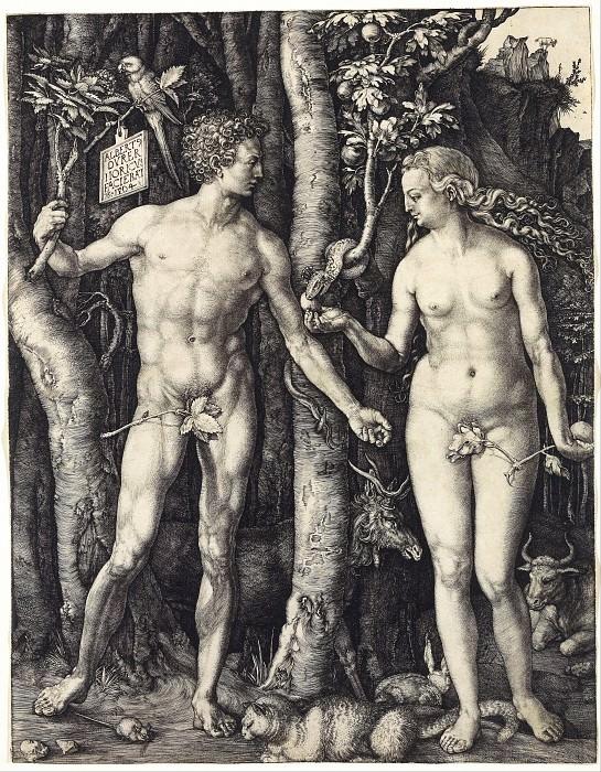 Adam and Eve. Durer Engravings