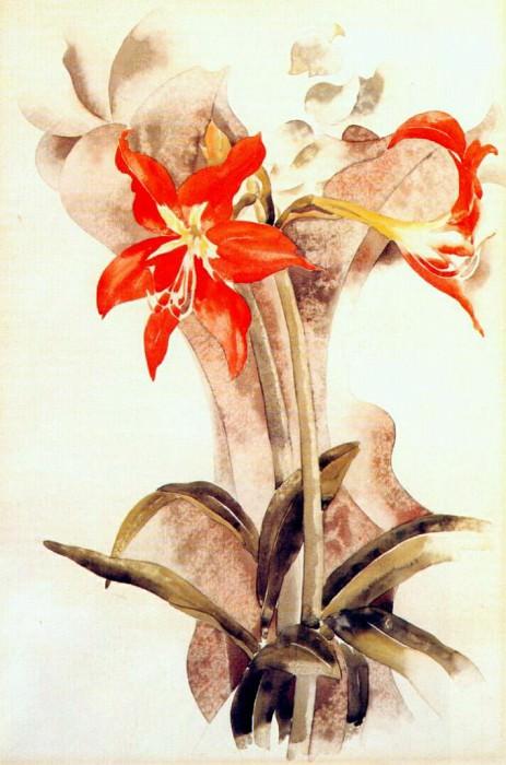 amaryllis c1923. Charles Demuth