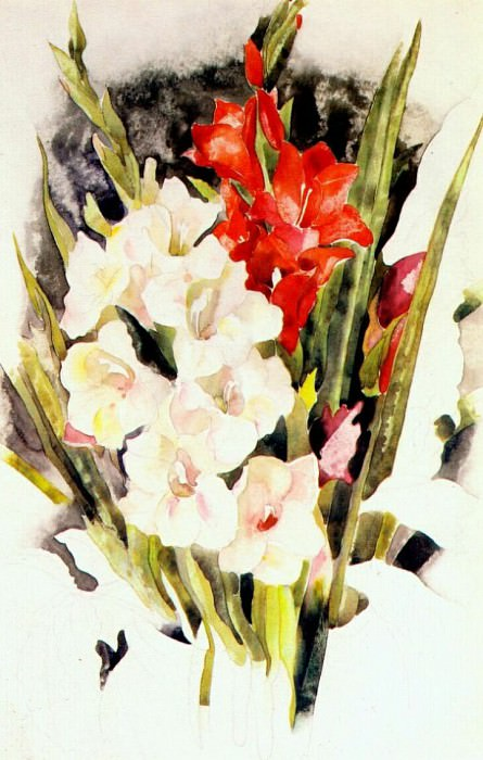 gladiolus c1923. Charles Demuth
