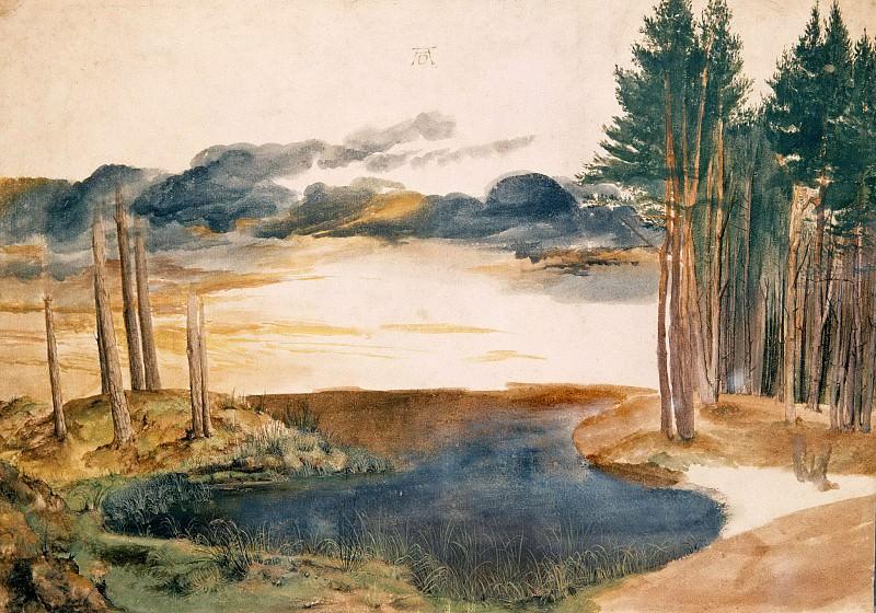 Pond in the Woods. Albrecht Dürer