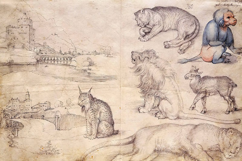 Sketches of Animals and Landscapes. Albrecht Dürer