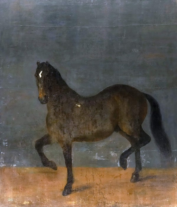 Horse called the Fire Clipper. David Klöcker Ehrenstråhl (Attributed)