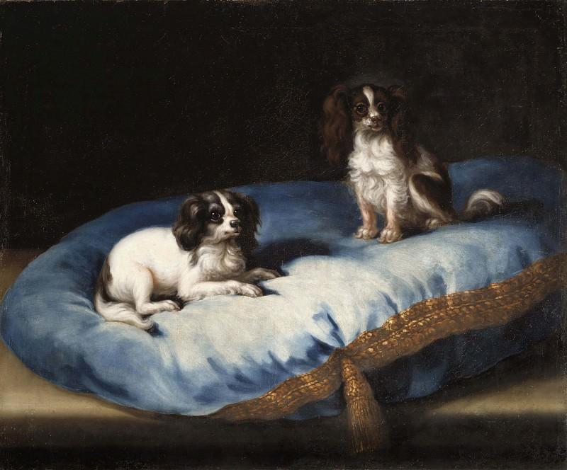 Two smaller dogs. David Klöcker Ehrenstråhl (Attributed)