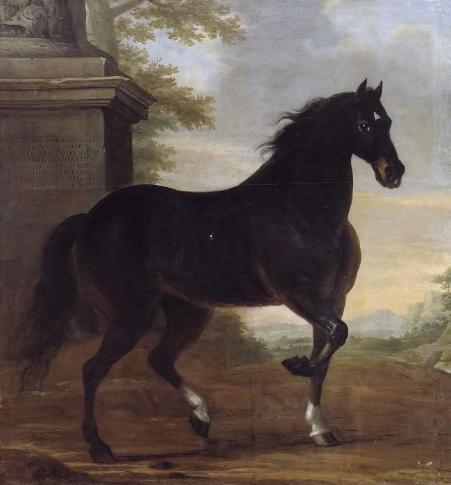 Karl XI's life horse Tott. David Klöcker Ehrenstråhl
