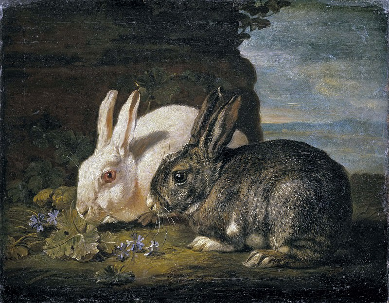 Two Rabbits. Jan Fyt (After)