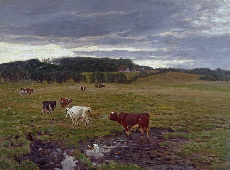 Boggy pasture. Oscar Frenzel