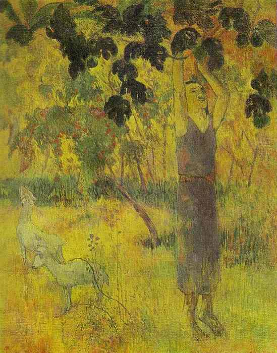 Man Picking Fruit From A Tree. Paul Gauguin