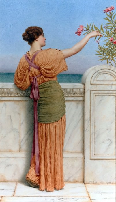 A Choice Blossom. John William Godward