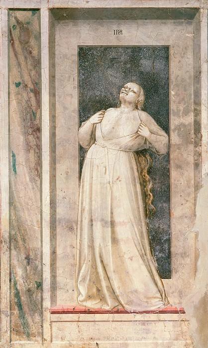 51 The Seven Vices: Wrath. Giotto di Bondone