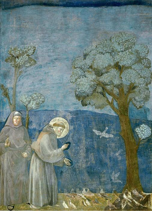 Legend of St Francis 15. Sermon to the Birds. Giotto di Bondone