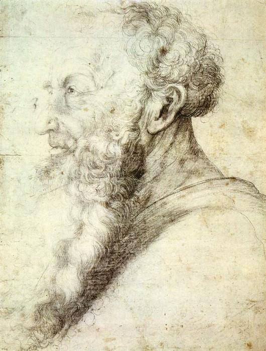 Эскиз к портрету старого мужчины. Маттиас Грюневальд