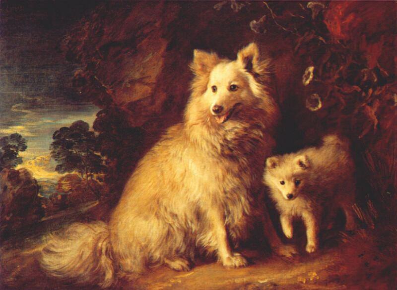 Померанская самка и щенок, ок.1777. Томас Гейнсборо