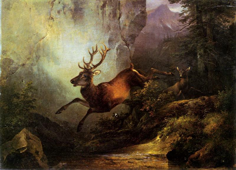 Олень, бегущий по лесу. Фридрих Гауэрман