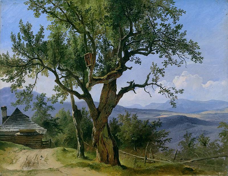 Старое дерево с религиозным образом. Фридрих Гауэрман