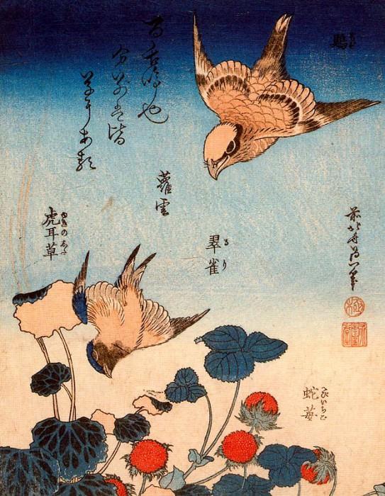 pic09496. Hokusai