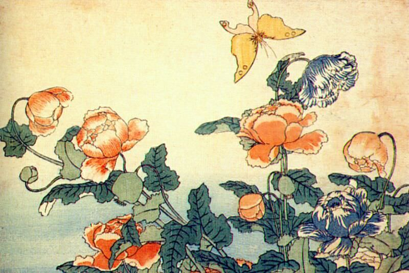poppies and yellow butterfly 1833-4. Hokusai