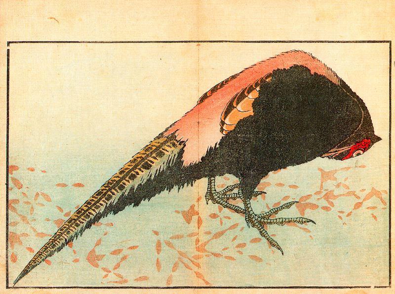pic09577. Hokusai