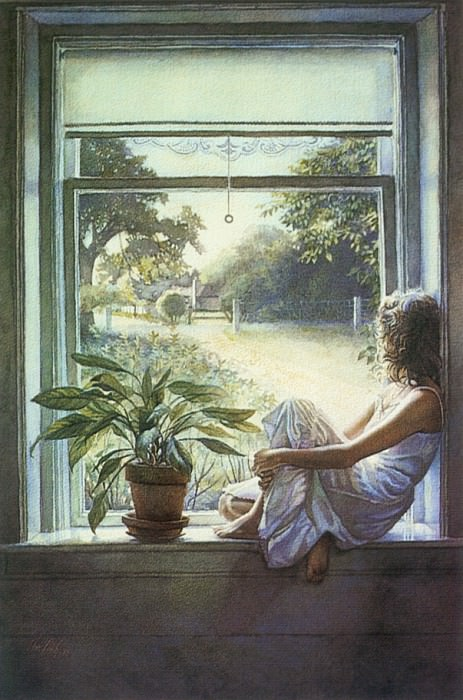 Windowsill. Steve Hanks