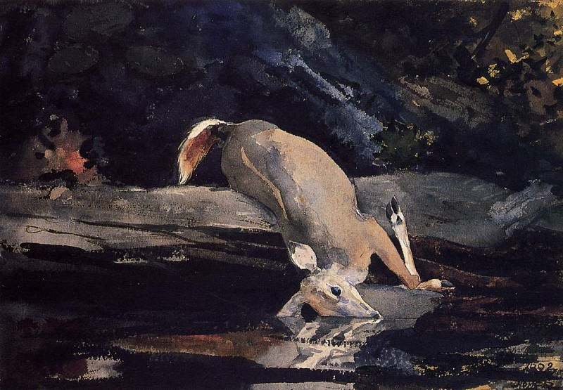 Fallen Deer. Winslow Homer