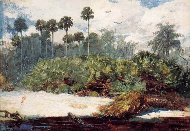 In a Florida Jungle. Winslow Homer