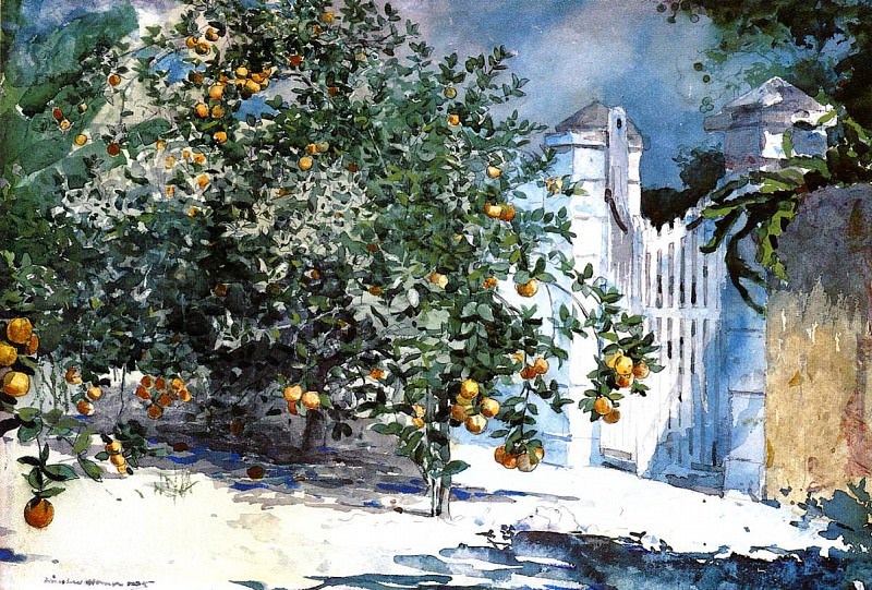 Orange Tree Nassau aka Orange Trees and Gate. Winslow Homer