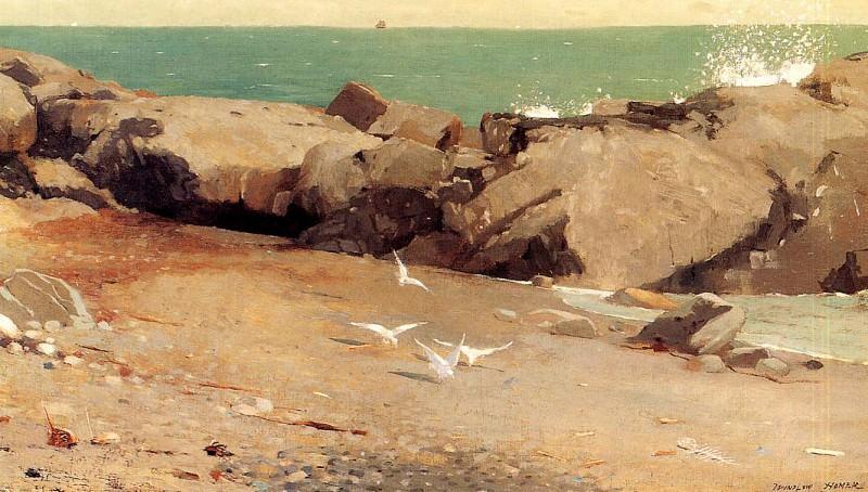 Rocky Coast and Gulls. Winslow Homer