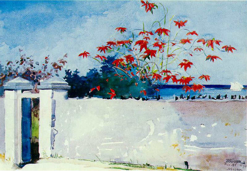 A wall, Nassau, 1898, 37.5x54 cm, Watercolor, Metropol. Winslow Homer
