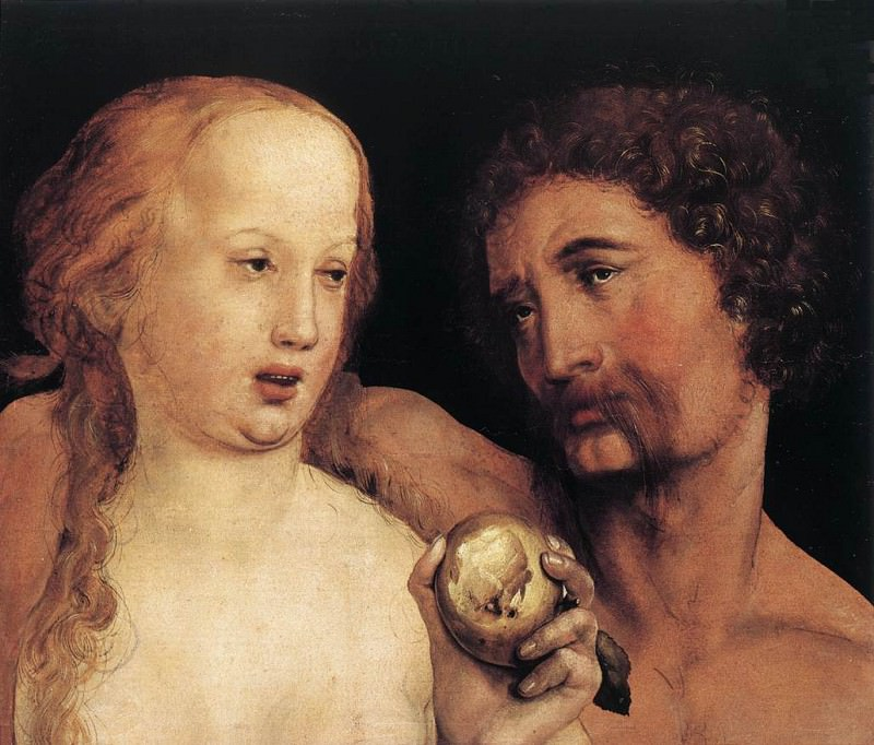 Adam and Eve. Hans The Younger Holbein