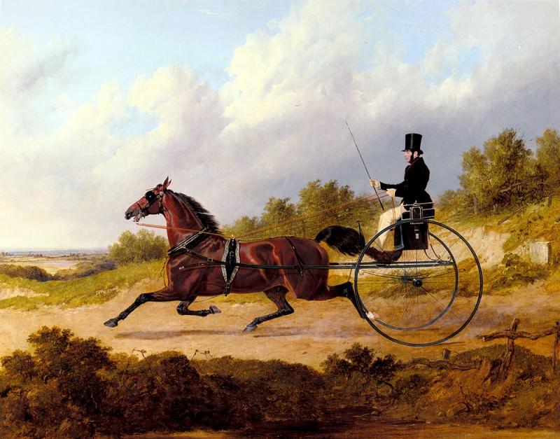 Знаменитая рысистая лошадь -Конфиденс-, запряженная в двуколку. Джон Фредерик Херринг