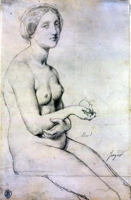 Ingres Study for -Venus a Paphos-. Jean Auguste Dominique Ingres