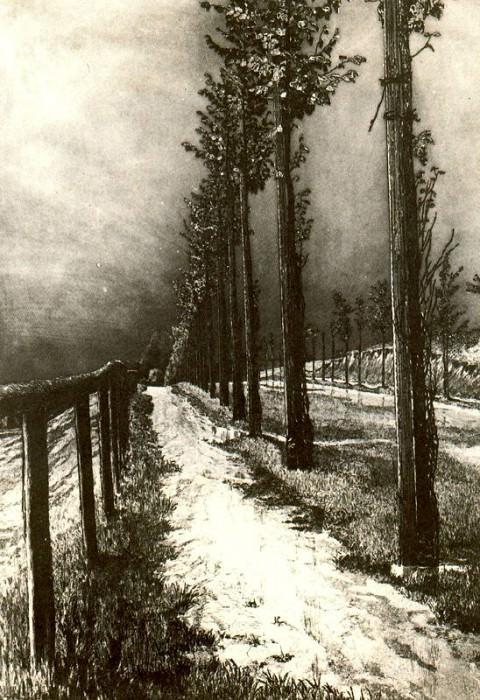 #18424. Макс Клингер