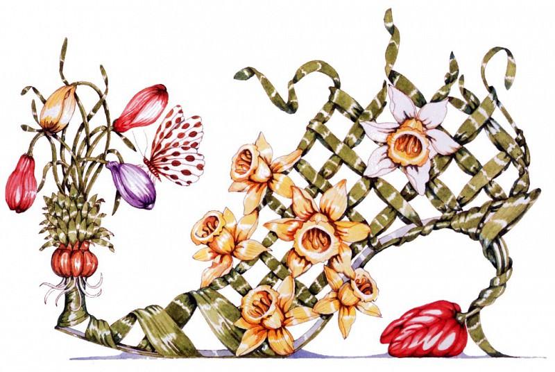 Crocus, Daffodil & Tulip. Dennis Kyte