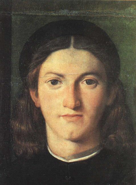 Head of a Young Man. Lorenzo Lotto