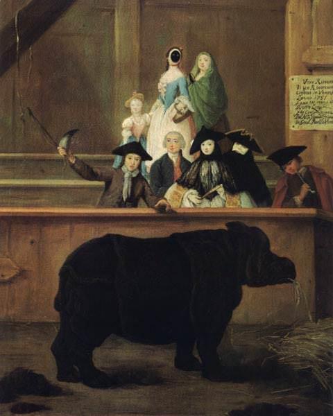 Il Rinoceronte. (1751). Venezia, ca Rezzonico.. Pietro Longhi