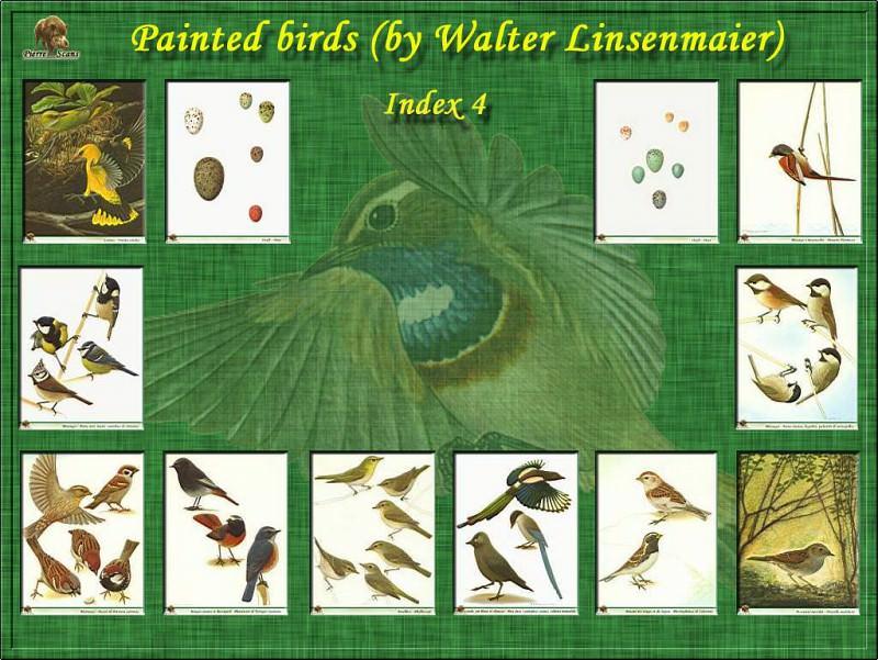 PO B2 40 Index 4. Walter Linsenmaier